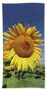 Bee On Blooming Sunflower Bath Towel