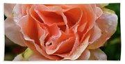 Salmon Pink Rose Bath Towel