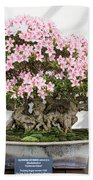 Spring Beauty Hand Towel