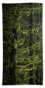 Stunning Fine Art Landscape Image Of Winter Forest Landscape In  Bath Towel