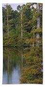 Tennesse Cypress In Wetland  Bath Towel