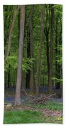Stunning Bluebell Forest Landscape Image In Soft Sunlight In Spr Hand Towel