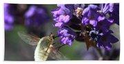 Fly Bee Hand Towel