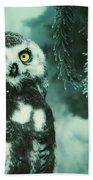 Winter Owl Bath Towel