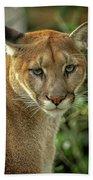 Puma Bath Towel
