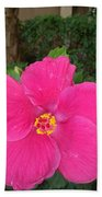 Bright Pink Hibiscus Hand Towel