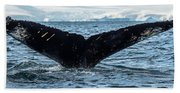 Whale In The Ocean, Southern Ocean Hand Towel