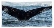 Whale In The Ocean, Southern Ocean Bath Towel