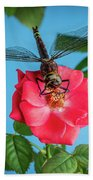 Dragonfly On A Flower Of A Red Rose. Macro Photo Bath Towel