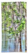 A Beautiful Day In The Bayou Hand Towel