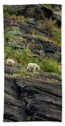 A Mother Mountain Goat And Her Kid Above Avalanche Lake Bath Towel by Belinda Greb