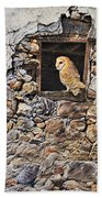 A New Home Barn Owl Bath Towel by Alan M Hunt