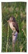 Adult Burrowing Owl Bath Towel