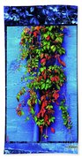 Alley-wall Paradise Hand Towel