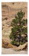 Amazing Life On The Sandstone Cliffs Bath Towel
