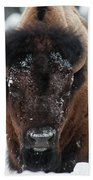 American Bison - Winter In Yellowstone Hand Towel by Frank Madia