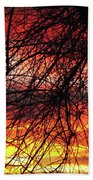 Arizona Sunset Through Branches Bath Towel