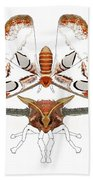 Atlas Moth2 Hand Towel