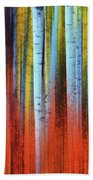 Autumn In Color Bath Towel by John De Bord