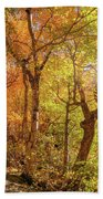 Autumn Morning On Smugglers Notch Bath Towel by Dan Sproul