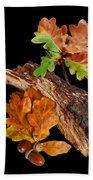 Autumn Oak Leaves And Acorns On Black Bath Towel