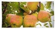 Backyard Garden Series - Apples In Apple Tree Bath Towel