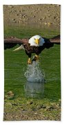 Bald Eagle Catching A Fish Bath Towel