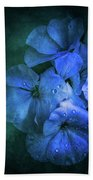 Blue Hand Towel by Allin Sorenson