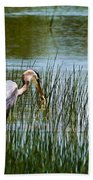 Blue Heron Catches Crawfish Photograph By Lisa Bell