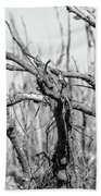 Branches In Black And White Bath Towel