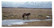 Brown Icelandic Horse In Profile Near Stream Hand Towel