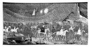 Canyon De Chelley Pictographs Bath Towel