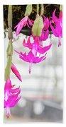 Christmas Cactus In Razzle Dazzle Pink Bath Towel