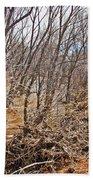 Cottonwood Az Bayou Leafless Trees Scrub Water Sand Clouds 3262019_5320 Bath Towel