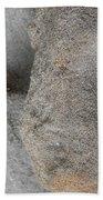 Creatures Of Sand Bath Towel