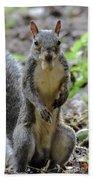 Cute Squirrel Bath Towel