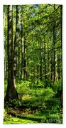 Cypress Trees Bath Towel