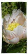 Delicate Pastel Peach Cupped Peony Blossom Bath Towel