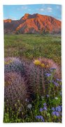 Desert Bluebell In Spring With Barrel Hand Towel