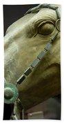Details Of Head Of Horse From Terra Cotta Warriors, Xian, China Bath Towel