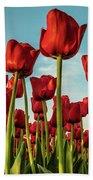 Dutch Red Tulip Field. Bath Towel by Anjo Ten Kate