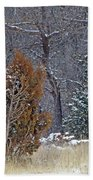 Early Winter On The Western Edge Hand Towel