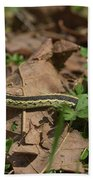 Eastern Garter Snake - 9167 Bath Towel
