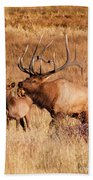 Elk And Mate In Rocky Mountain Meadow Bath Towel