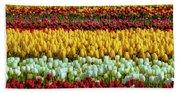 Endless Beautiful Tulip Fields Bath Towel