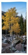 Fall Trees In The Rocks Hand Towel by James Udall