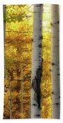 Fall's Visitation Hand Towel by Rick Furmanek