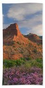 Feather Dalea, Caprock Canyons State Bath Towel