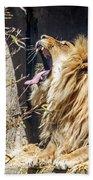 Fierce Yawn Bath Towel by Kate Brown