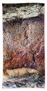 Font De Gaume Bison Bath Towel